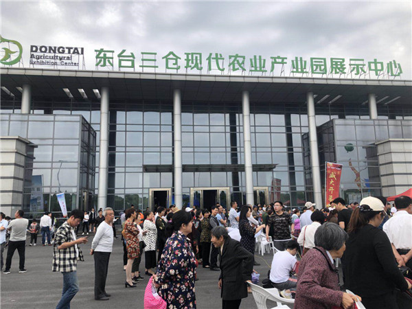 2019东台西瓜节隆重启幕_多彩活动喜庆丰收